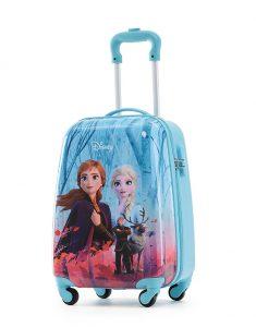 Frozen Luggage